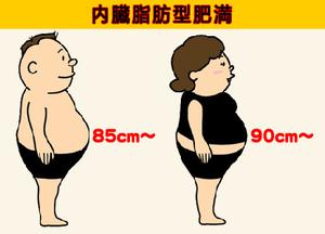内臓脂肪型肥満予防の腹囲測定!...